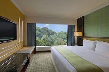 園景假日酒店 (新加坡)