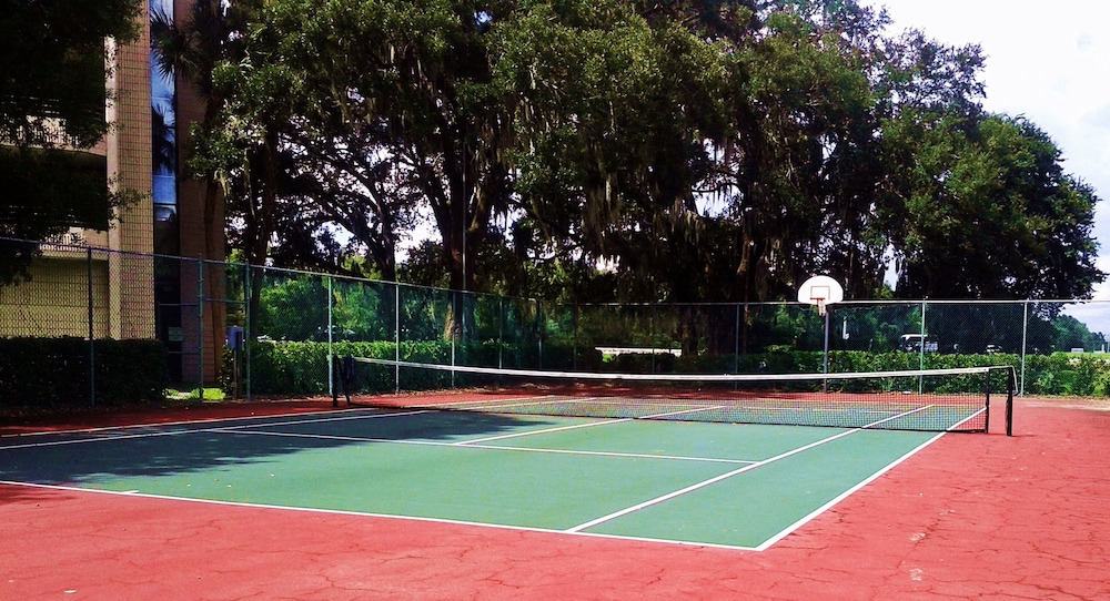 Tennis and Basketball Courts : Tennis Court 61 of 101