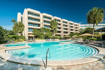 坦帕布蘭頓喜來登飯店 Sheraton Tampa Brandon Hotel