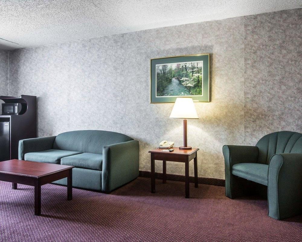 퀄리티 인 & 스위트(Quality Inn & Suites) Hotel Image 19 - Guestroom