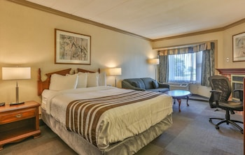 Standard Room, 1 Queen Bed with Sofa bed, Non Smoking, Fireplace (with Sofabed)
