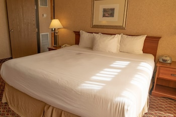 Deluxe Suite, 1 King Bed, Non Smoking (One-Bedroom)