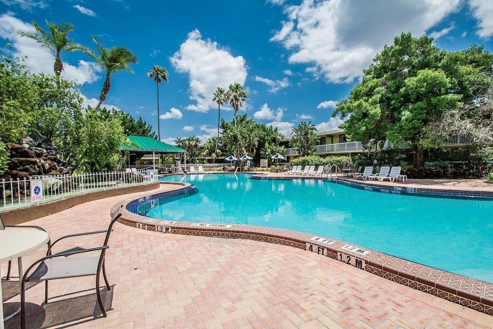 Pool Photo