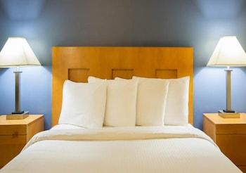 Deluxe Room, 1 Queen Bed, Refrigerator
