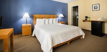 Deluxe Room, 1 King Bed, Refrigerator