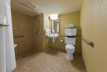 Suite, Accessible, Non Smoking (Roll-In Shower)
