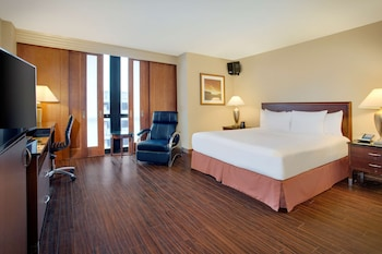 Room, 1 King Bed, Accessible, Allergy Friendly