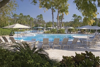 Hotel - Saddlebrook Golf Resort and Spa
