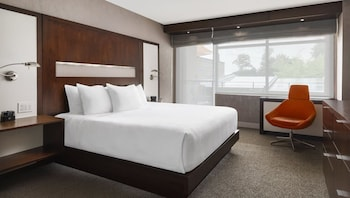 Executive Room, 1 King Bed, Accessible