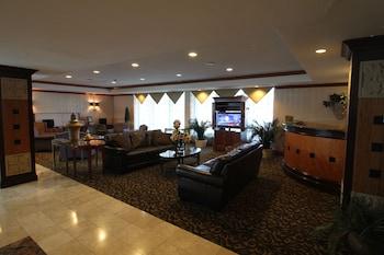 Lobby Sitting Area at Gateway Hotel Dallas in Dallas