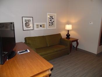 Süit, 1 Yatak Odası, Sigara İçilmez (king Bed With Sofa Bed)