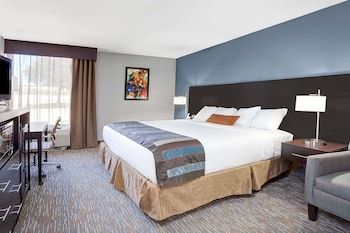 Room, 1 King Bed, Accessible, Non Smoking (Mobility,Hearing,Roll-In Shower)