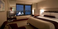 Room, 1 King Bed, View (Opera)