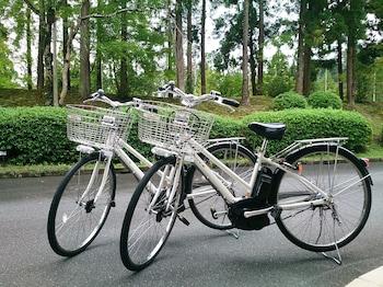 GRAND PRINCE HOTEL KYOTO Bicycling
