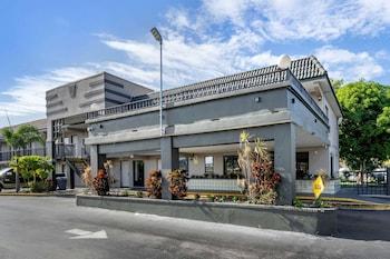 克里爾沃特 - 但尼丁羅德威旅館 Rodeway Inn Clearwater-Dunedin
