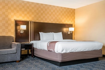 Quality Inn & Suites Mall of America - MSP Airport - Guestroom  - #0