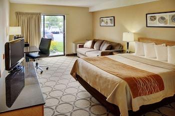 Standard Room, 1 Queen Bed with Sofa bed, Non Smoking, Ground Floor