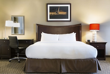 Junior Suite, One King Bed, with Jetted Tub