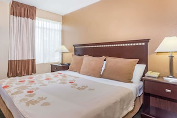 Suite, 1 King Bed, Non Smoking (One-Bedroom, Luxury)