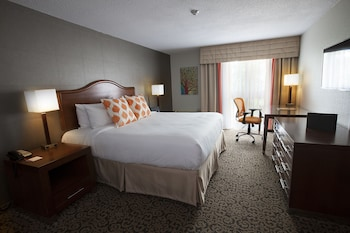 Superior Room, 1 King Bed, Courtyard View