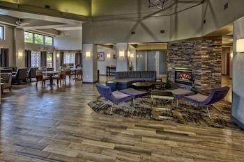 康曼非斯沃夫切斯畫廊歡朋套房飯店 Hampton Inn & Suites Memphis-Wolfchase Galleria