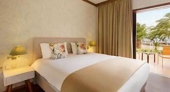 https://i.travelapi.com/hotels/1000000/110000/109800/109771/b4d887f2_b.jpg