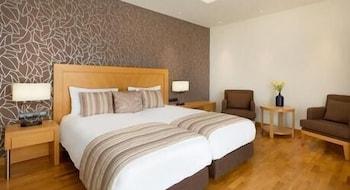 https://i.travelapi.com/hotels/1000000/110000/109800/109771/ef169fcd_b.jpg