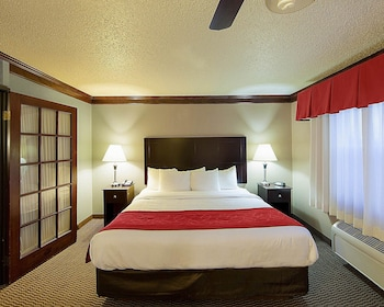 Guestroom at Quality Suites Addison-Dallas in Addison