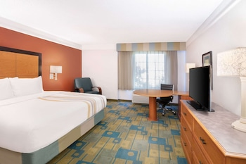 Room, 1 King Bed, Non Smoking, View (Park/Pool View)