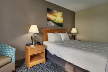 Room, 1 Queen Bed, Accessible (Handicapped Queen)