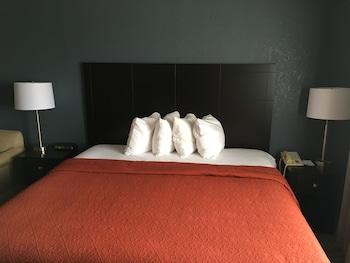 Quality Inn & Suites Port Huron - Guestroom  - #0