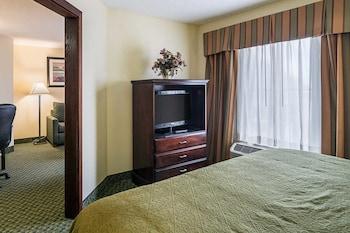 Quality Inn & Suites - In-Room Amenity  - #0