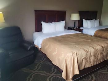 Standard Tek Büyük Yataklı Oda, 2 Çift Kişilik Yatak, Sigara İçilmez