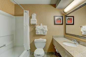 Comfort Suites Raleigh Durham Airport/Research Triangle Park - Bathroom  - #0