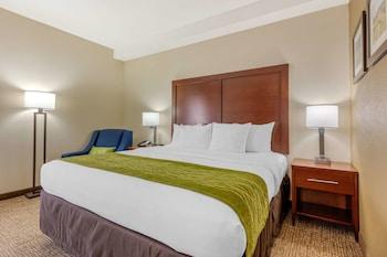Hotel - Comfort Inn Lenoir City