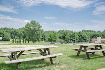 Super 8 by Wyndham Tomah Wisconsin - BBQ/Picnic Area  - #0