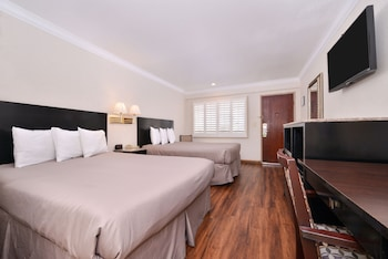 Room, 2 Twin Beds, Accessible