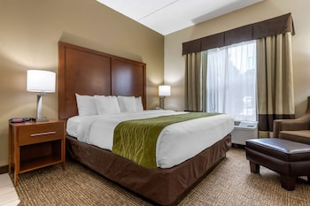 Room, 1 King Bed, Accessible, Non Smoking (Roll-In Shower)