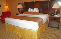 Standard Room, 1 King Bed, Accessible, Non Smoking at Best Western Plus Universal Inn in Orlando