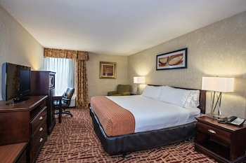Room, 1 King Bed, Accessible, Non Smoking (Mobility, Bathtub)