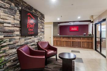 北康羅威利斯紅屋頂旅館 Red Roof Inn Conroe - North Willis