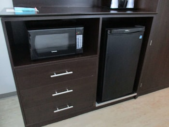Standard Room, 1 King Bed, Non Smoking, Refrigerator & Microwave (with Single Sofabed)