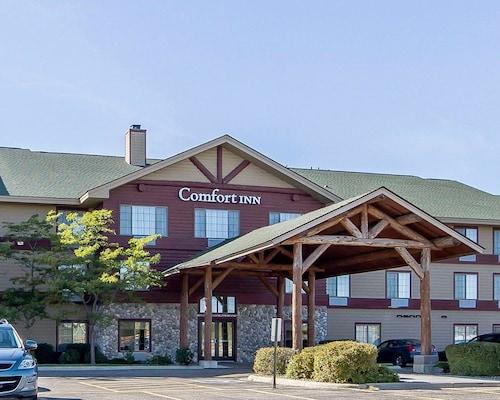 . Comfort Inn Owatonna near Medical Center