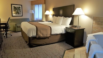 Deluxe Studio Suite, 1 King Bed, Non Smoking, Jetted Tub