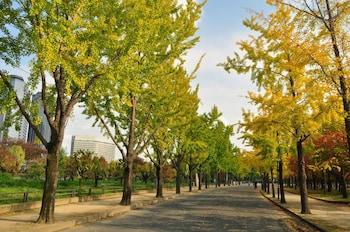 HOTEL NEW OTANI OSAKA Garden