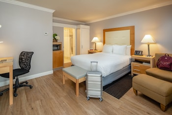 Deluxe Single Room, 1 King Bed