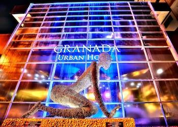 利安德格拉納達城市飯店