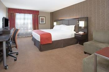 Room, 1 King Bed, Non Smoking, Mountain View