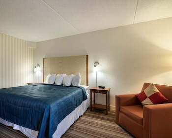 Traditional Room, 1 King Bed, Non Smoking, Refrigerator