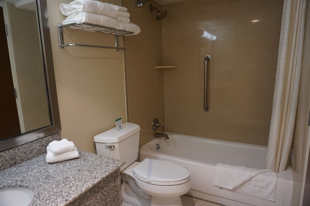 Suite : Suite, 1 King Bed, Non Smoking, Refrigerator & Microwave 45 of 156